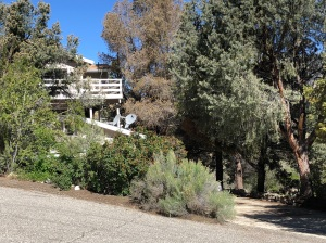 Home For Rent in Pine Mountain Club