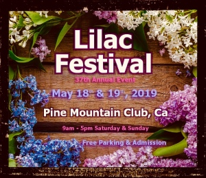 Pine Mountain Club Lilac Festival